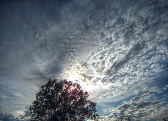 Il Tiglio del Cielo (Mantiuk06)