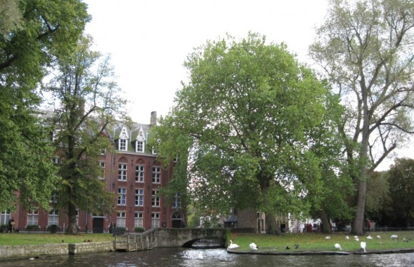 Bruges - Vista dai canali 7