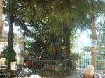 Liguria - Triora 1