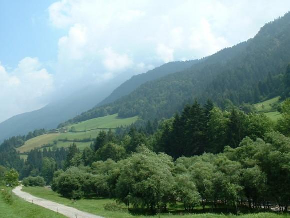 Montagna - Gromo 5
