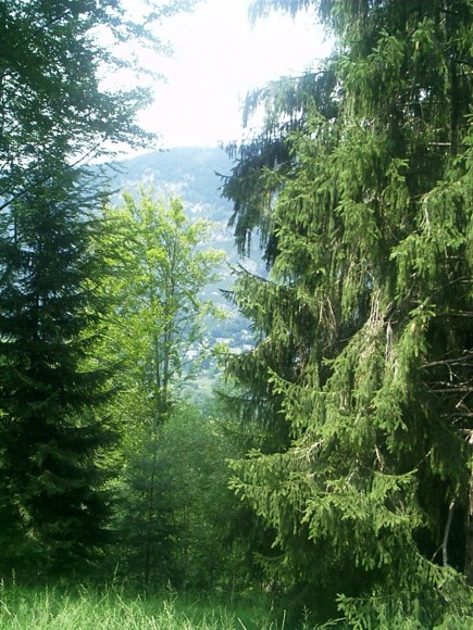 Montagna - Malesco 5