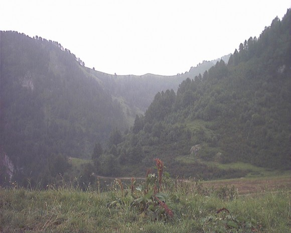 Montagna - Prato Nevoso 8