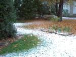 Neve 12