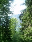 Montagna - Malesco 4