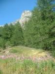 Montagna - St Marcel 24